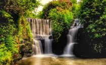 Penllergare Valley Woods © City & County of Swansea